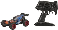 1:22 Buggy Racing Car 2.4GHz